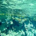 Glasklares Wasser